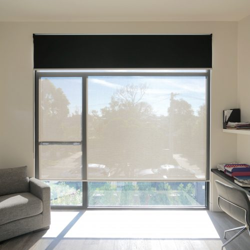 Main Roller Blinds